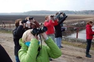 Европейские осенние дни наблюдений за птицами